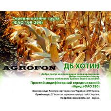 Кукуруза Хотин