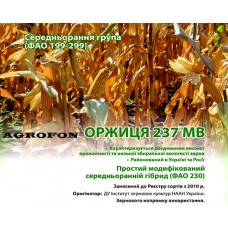 Кукуруза ОРЖИЦА