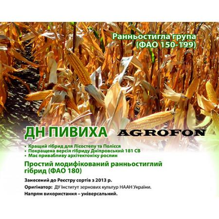 Ранняя Семя кукуруза ПИВИХА. Кукуруза «ПИВИХА»ФАО 180, урожай 11,5-12,0 т/га.