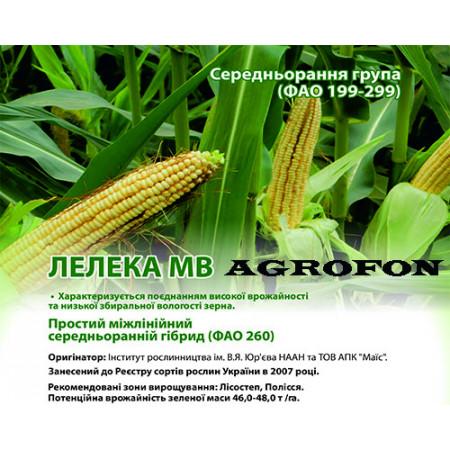Семена кукурузы Лелека