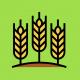 Продажа удобрения для зерновых в Украине