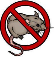 отрава для мышей и грызунов