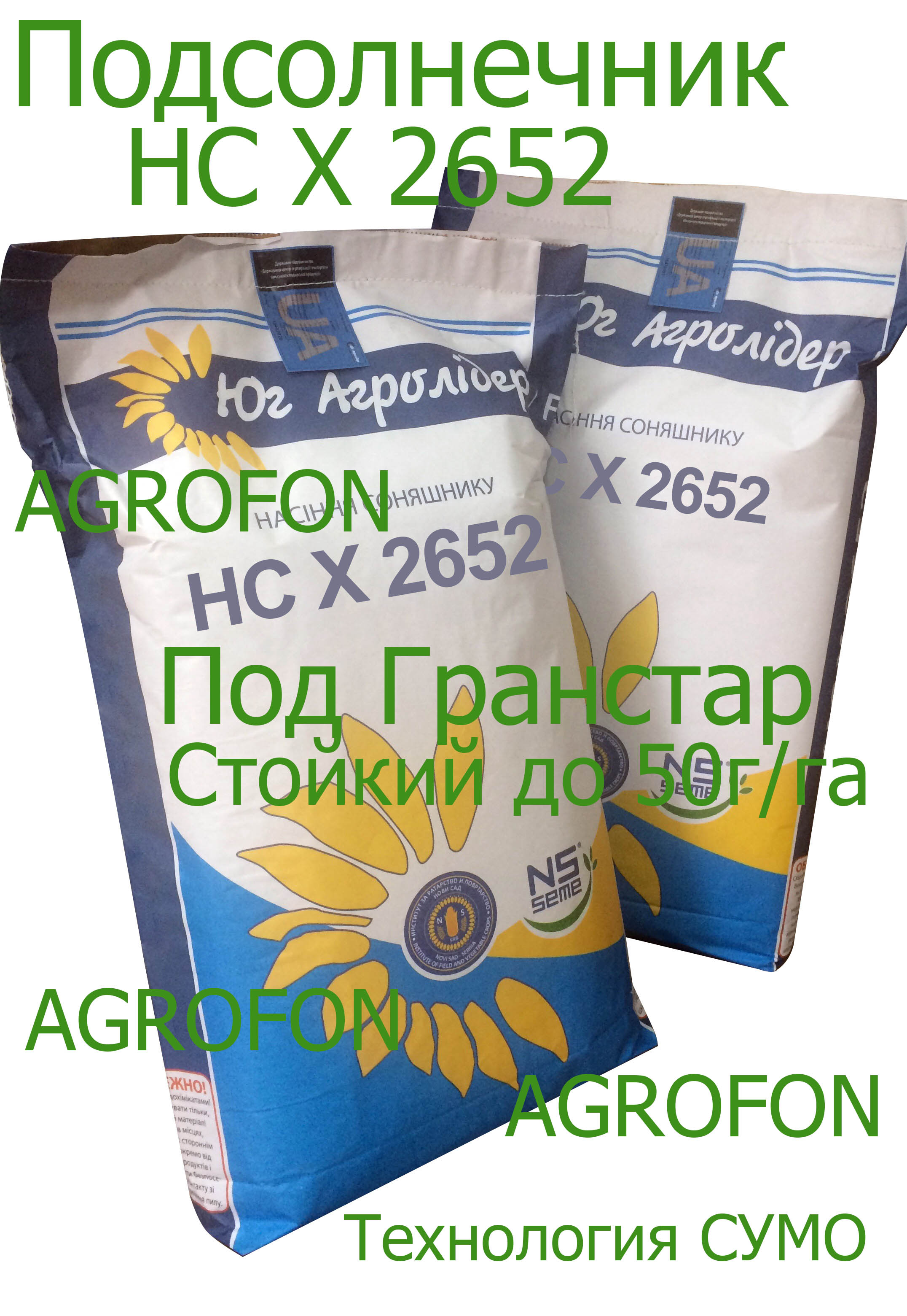 семена подсолнечника НС Х 2652