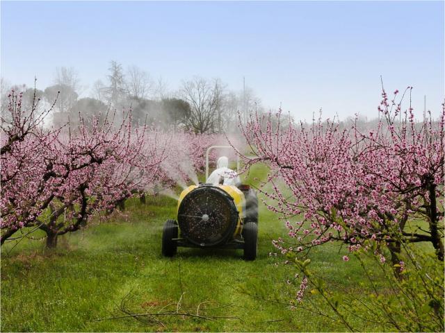 препараты СЗР, купить гербициды ,применение пестицидов,гербициды инструкция