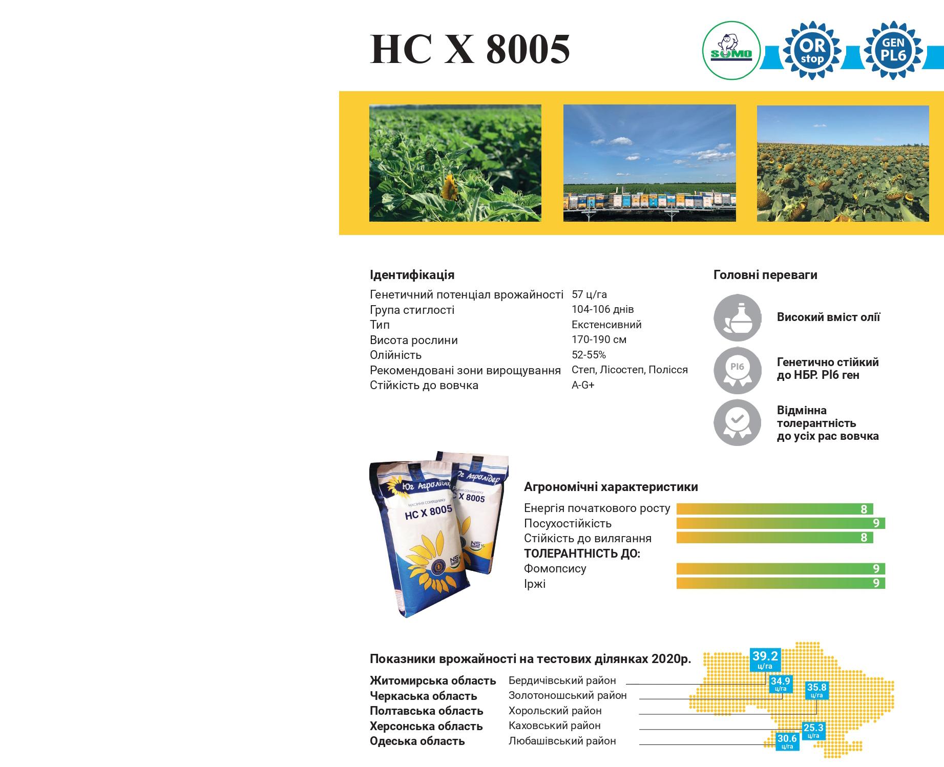 Квітуче поле соняшнику НСХ-8005
